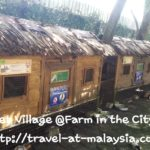 Farm in the City. Malaysia's Premier Petting Zoo