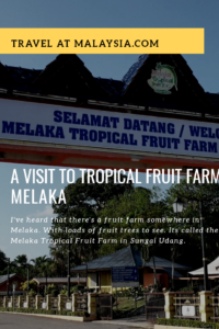 A visit to the Tropical Fruit Farm Melaka