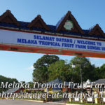 A Visit to Tropical Fruit Farm Melaka, Sungai Udang