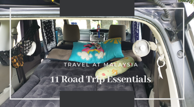 11 Road Trips Essentials in my Car